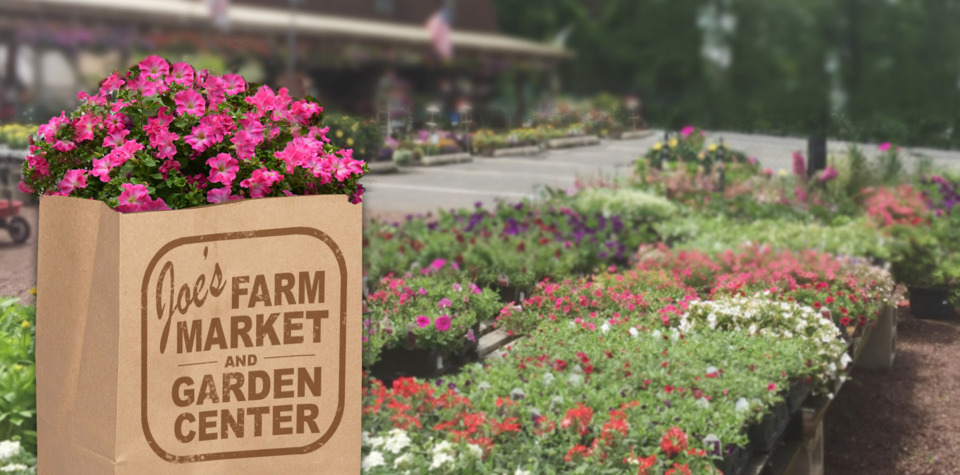 Joe S Farm Market Amp Garden Center Contact Us